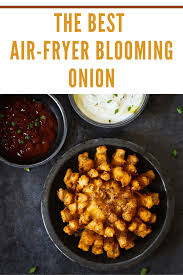 air fryer blooming onion recipe mommy