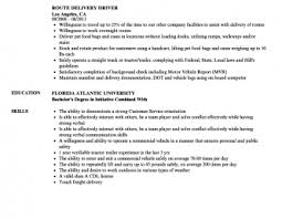 Sample Delivery Driver Resume Costumepartyrun