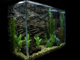 Fish Tank Backgrounds Printable All New Resume Examples