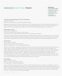 Web Designer Resume Example Web Designer Resume Resume Examples Pdf