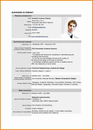 Cv Sample Format Download Example Of Curriculum Vitae Best Free Cv Template Professional