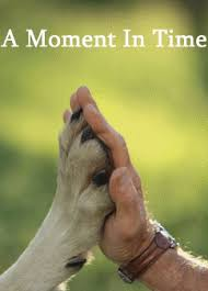 Sprüche Und Zitate Tiere Das Leben Ist Schön Zitate