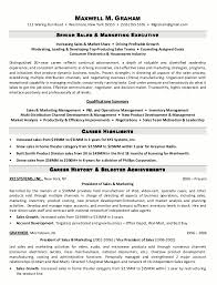 Sales And Marketing Manager Resume Sample Resume Senior Sales