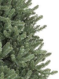 ... Canadian Blue Green Spruce Alt