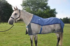 aerochill rug for horses the aerochill cooling rug in size large good size 16 3