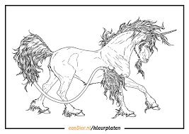 Eenhoorn Kleurplaat Uitprinten