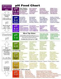 Alkaline And Acidic Food Chart Pdf Food Herbs Chart Benefits Ph Food Chart Alkaline Foods
