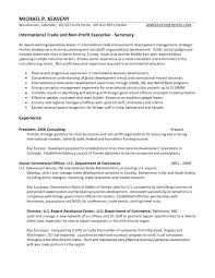Non Executive Director Resume Examples Chic Non Profit Executive Director Resume Examples For Your Cover 24