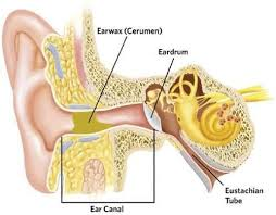 The Truth about Ear Candling - Michigan ENT, Allergy, & Audiology
