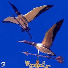 Loon Weathervane Flying