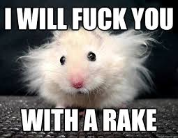 Sexually Aggressive Hamster memes | quickmeme via Relatably.com