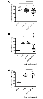 nuclear factor y subunit a nf ya proteins positively regulate fig 6