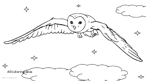 Snowy Owl Coloring Pages Owl Coloring Pages For Kids Barn Owl