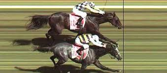 Wooden Horse Race Game Pattern OFF TRACK BETTING Bet Horse Racing Greyhound Racing Online 79