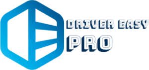 Driver Easy Pro 5.6.16 Crack with Activation Key Free Download 2021