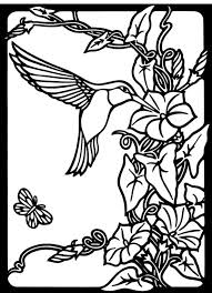 Small Picture Hummingbird coloring pages free to print ColoringStar