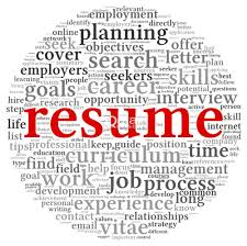 Professional Resume Writers Cost Lovely Professional Resume Writing ...