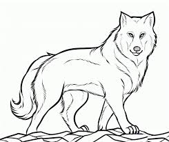 Small Picture Wolf coloring pages walking ColoringStar