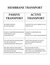 Venn Diagram Of Diffusion Osmosis And Active Transport Passive Transport Versus Active Transport Classroom