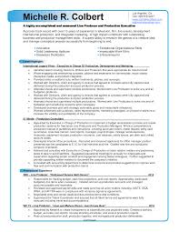 image of printable film resume sample large size - Television Producer  Resume