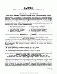 Executive Executive Resume Template Examples Creative Design Resume