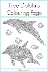 Small Picture 15 best Coloring Pages Dolphins and Whales images on Pinterest