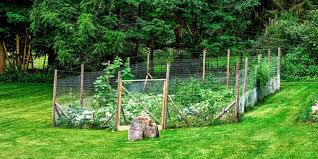 garden fence. Corey Olsen Garden Fence G