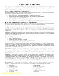 Should I Include An Objective On My Resume Good To Put Tips For Custom Should You Put References On Your Resume