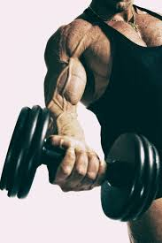chest and biceps workout get a big