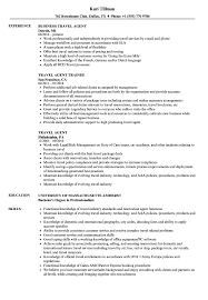 Travel Agent Resume Sample Best For Format Curriculum Vitae Agency