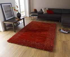 sable burnt orange soft silky rug
