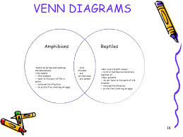 Difference Between Amphibians And Reptiles Venn Diagram Study Guide