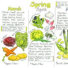 Seasonal Fruit And Veg Chart Uk Seasonal Uk Fruit And Vegetable Chart Liz Cook Charts In