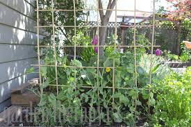 Small Picture How to Make a DIY Bamboo Trellis