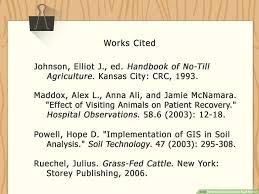 012 Mla Bibliography Format Website Citation Example 82250