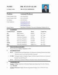 Resume Sample For Job Application Pdf 100 Lovely Job Application Resume Format Pdf Resume Sample 68