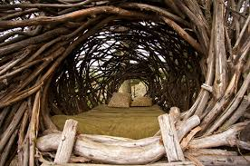 Treehouse masters mirrors Brandforesight Treebones Before You Die Before You Die Stay In Treehouse At The Treebones Resort Big Sur