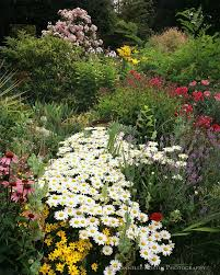 Small Picture 101 best Planting Design Drifts Massing images on Pinterest