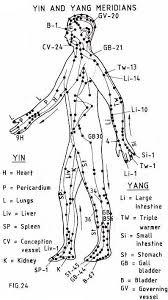 Shiatsu Tsubo Chart Aromatherapy Series 2 Message Sheilas Space My Place To