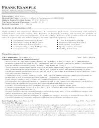 Resume Examples For A Job Personal Summary Resume Examples Job ...