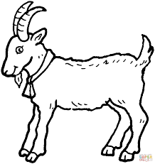 Small Picture Billy Goat coloring page Free Printable Coloring Pages