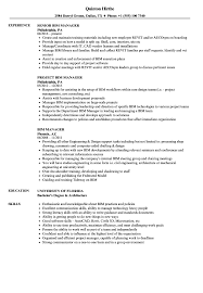 Download BIM Manager Resume Sample as Image file