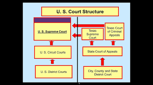 Dual Court System 2 Youtube