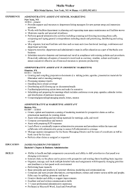 Sample Marketing Assistant Resume Administrative Marketing Assistant Resume Samples Velvet Jobs 6