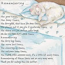 Sympathy Card Pet Loss Loss Of A Pet Cat Condolence Sympathy Card Remembering The Good