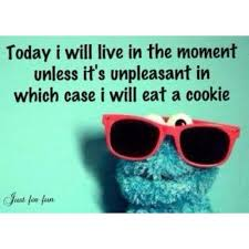 Cookie Quotes Beauteous Cookie Monster Quotes Cookie Monster