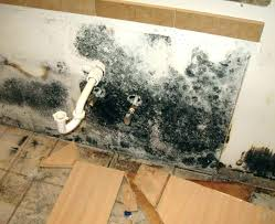 remove mould from bathroom walls and ceiling best way