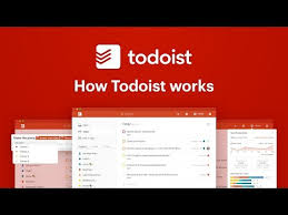 The Todo List Movie Online Free Todoist To Do Lists For Task Management Errands Apps On Google Play
