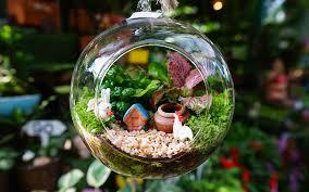 fairy garden ideas the