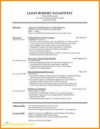 WwwResumeCom Adorable Good Words To Use On A Resume Unique Easy Resume Examples New Good